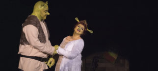 shrek performance